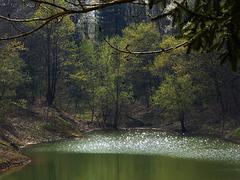 Il lago di Pianfei a Primavera