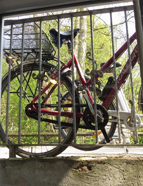 Mal wieder raus und Rad fahren: HFF to all my friends