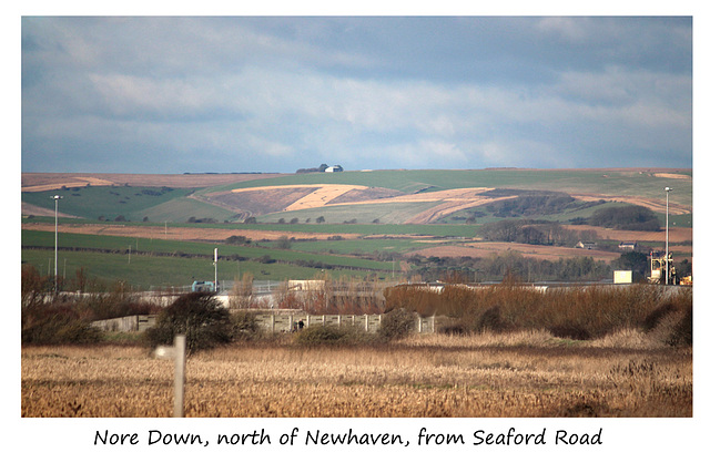 Nore Down, north of Newhaven, from Seaford Road - 15.1.2016