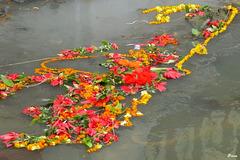 Restes entourant la crémation...dérivant dans la rivière sacrée Bagmati