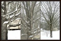 .. still snowing