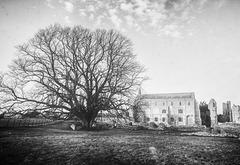 Binham Priory, Norfolk