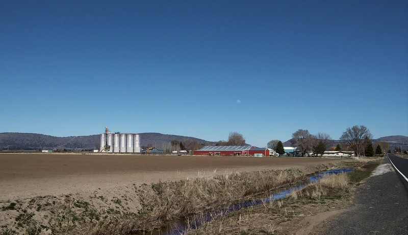 Farm near Henley