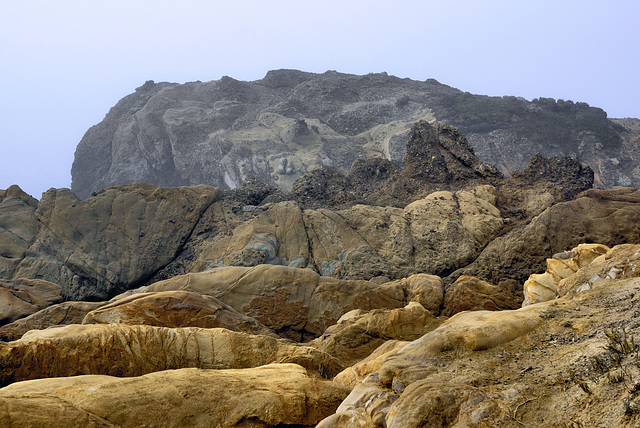 Bolsters – Point Lobos State Natural Reserve, California