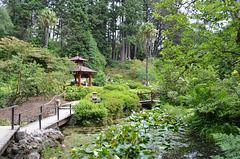 Powerscourt Gardens, Japanese Garden