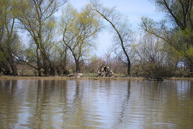Das Ufer der Jermakiw-Insel
