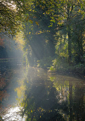 Soft mist and light on the canal.