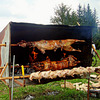 Barbecue in the fair way