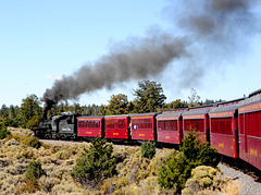 Cumbres and Toltec Train on Curve