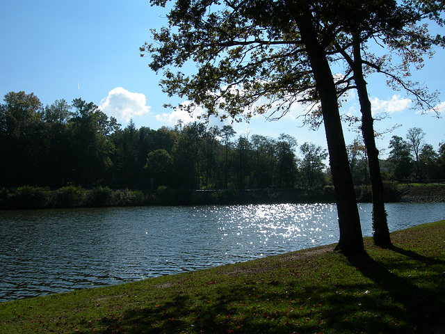 L'étang du Bourg. Dampierre en Burly.