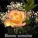 Fleurs pour ton cœur, my friend !