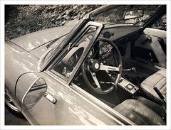 Vintage Alfa Romeo (2)