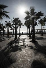 Costa del Sol (fin de año)