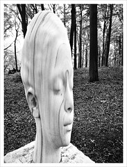 sculpture in the woods