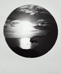 polaroid 16:4:2021