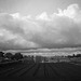 Typhoon is coming