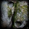 Nature Art..[°I0]......O