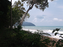Nature Thaïlandaise / Thaï wilderness / ธรรมชาติไทย