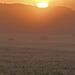 May Sunrise (3)