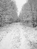 Snowbound, Sweden