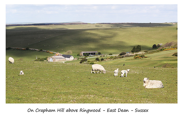 On Crapham Hill - Sussex - 30.4.2015