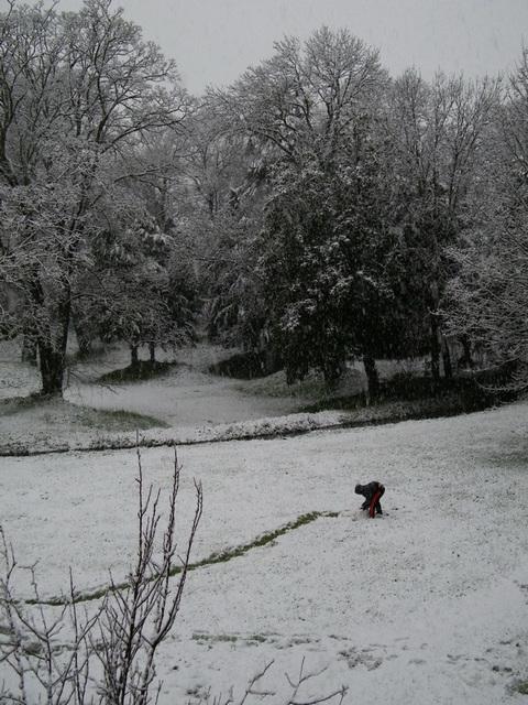 Jeu dans la neige