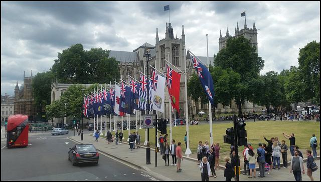 Parliament Square flags