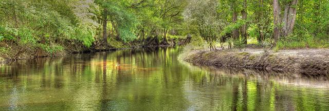 Rice Creek Panorama