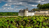 Château and Gardens of Villandry (château of the Loire Valley)