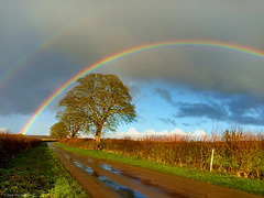 After the Rain on Moor Lane