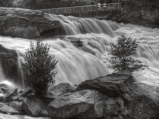 Reedy River Falls BW