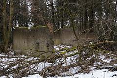 Eifel - Hohe Acht DSC00187