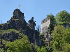 Burgruine Tachenstein