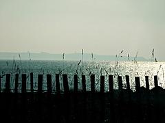 ღஐƹ̵̡ӝ̵̨̄ʒஐღ notre Ile de GROIX dans la brume