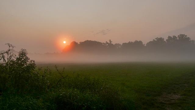 """ dans un brouillard qui danse..."""