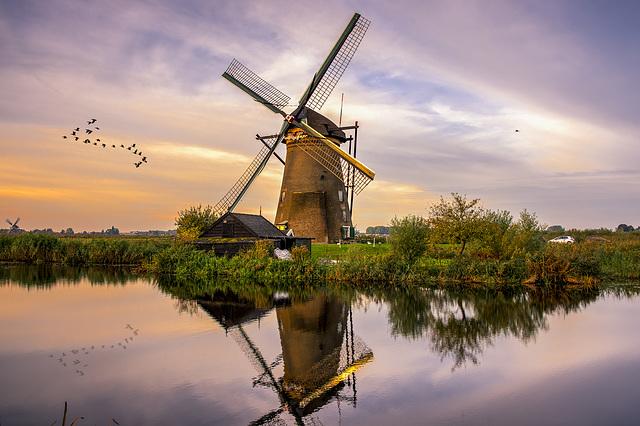 Pond Reflection of Windmill Sunrise