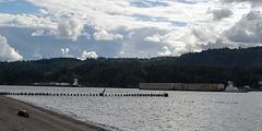Kalama WA Columbia River (#1490)