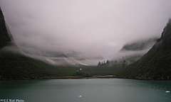Cold Misty Valley