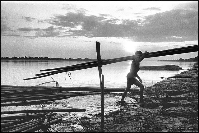 Livreur de bambous, sur fond de coucher de soleil