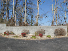 Landscaping and nonlandscaping, with a concrete wall between them.