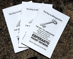 Esperanto Pocket Textbook