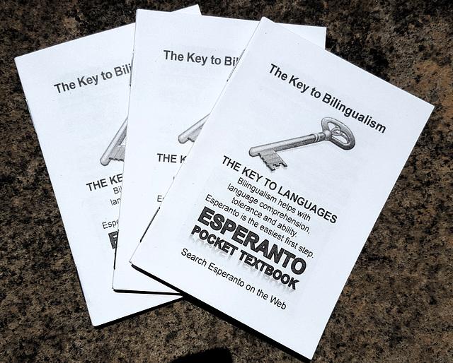 Esperanto Pocket Textbook
