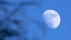 Chercher à s'éclipser.....