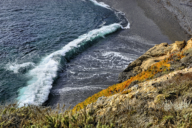 Coming In – Point Lobos State Natural Reserve, California
