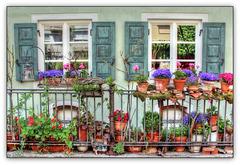 .•❀.•❤•.¸✿¸.•❀'Urban Gardening'❀•.¸✿¸.•❤•.❀•.