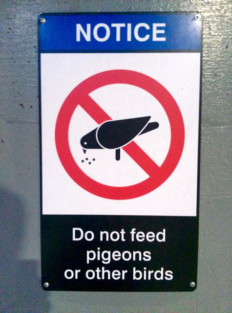 Canada 2016 – Toronto – Do not feed pigeons or other birds