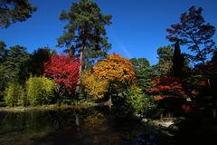 Arboretum des Grandes Bruyères-, Forêt d'Orléans