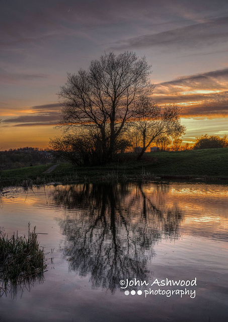 Evening Reflections