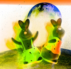 space rabbits on tour .....