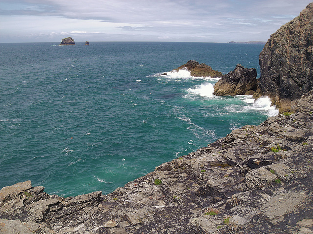 Man and His Man from St Agnes Head. For Pam.